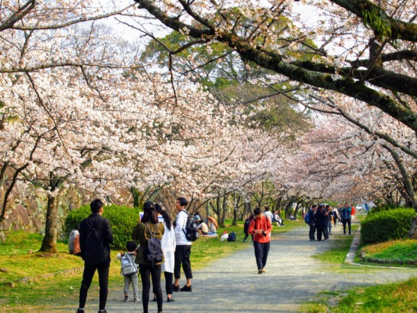 福岡市 舞鶴公園