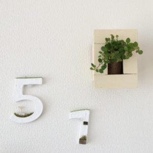 壁にかけるグリーン